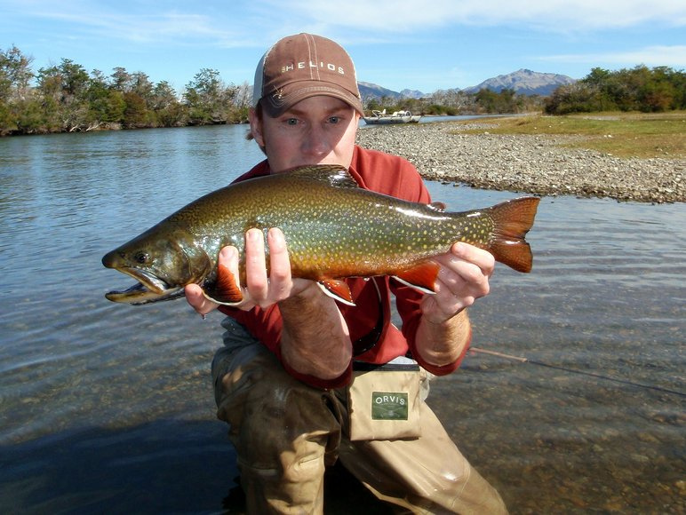 Orvis brook trout fishing guide for Fishing in argentina